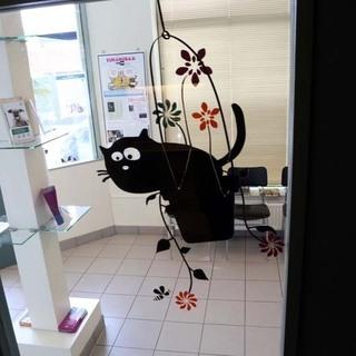Vétérinaire Lambert - Galerie Photos
